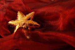 guld- stjärna Royaltyfri Fotografi