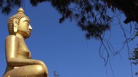 Guld- stor buddhd välsignar royaltyfria foton