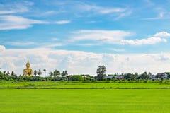 Guld- stora buddha och risfält royaltyfria foton