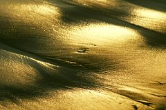 Guld- strand Royaltyfria Foton