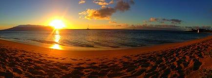 Guld- strand Arkivbild
