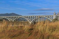Guld- strand Oregon Royaltyfri Bild