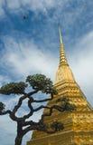 Guld- stupa och en tree över bakgrund för blå sky royaltyfri foto