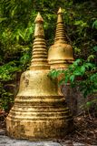 Guld- stupas i djungeln royaltyfri bild