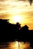 guld- sun Arkivfoton