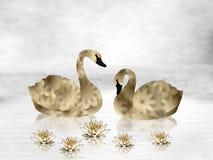 Guld- svanar och näckrors Royaltyfria Bilder