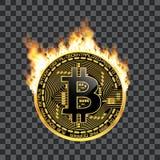 Guld- symbol för Crypto valutabitcoin på brand Royaltyfri Bild