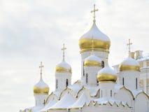 Guld- taklägger av Kremlin Royaltyfria Bilder