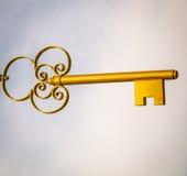 guld- tangent Royaltyfri Foto
