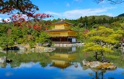 GULD- TEMPEL för KINKAKUJI i kyoto Japan royaltyfria foton