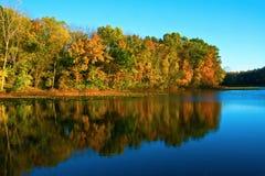 Guld- timme Autumn Lake royaltyfri fotografi
