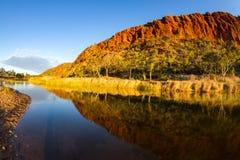 Guld- timme på Glen Helen Gorge Royaltyfri Foto