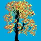 Guld- träd för höst på blå bakgrund Royaltyfri Bild