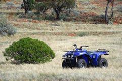 Guld- uthärda prospection i den australiensiska busken Royaltyfri Foto