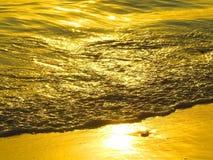 Guld- våghav på solnedgången Royaltyfri Foto