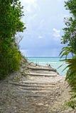 Guld vaggar stranden, Bahamas Arkivfoton