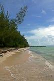 Guld vaggar stranden, storslagna Bahama bah Arkivbild