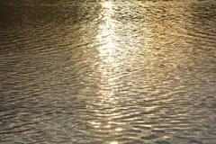 Guld- vatten på solnedgången i sjön Royaltyfri Bild