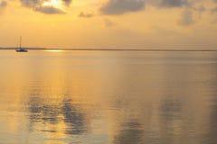 Guld- vatten seascapes Royaltyfri Foto