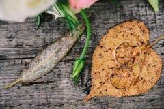 Guld- vigselringar på apelsinen, hösttjänstledigheter Arkivfoto