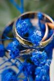 Guld- vigselringar på blåa blommor Royaltyfria Bilder