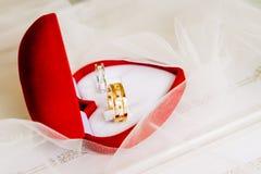 Guld- vigselringar på en röd ask Royaltyfri Bild
