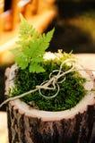 Guld- vigselringar som binds med, tvinnar på en mossakudde med ett blad av ormbunken arkivfoto