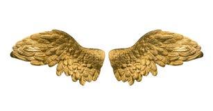 Guld- vingar royaltyfri fotografi