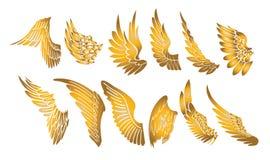 Guld- vingar stock illustrationer