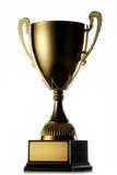 guld- vinnare för kopp Royaltyfria Bilder
