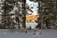 Guld- vintersoluppgång på den felika sjön Royaltyfri Bild