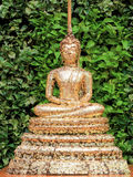 Guldark på Buddha Royaltyfri Bild