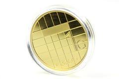 1 Gulden gouden muntstuk Royalty-vrije Stock Foto's