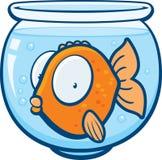 guldfisk vektor illustrationer