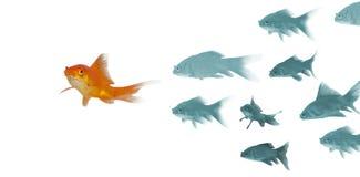 guldfisk 3D mot vit bakgrund Arkivfoto