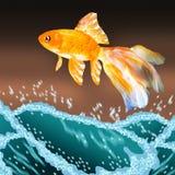 Guldfisk som ut hoppar stock illustrationer