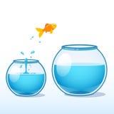 Guldfiskdanande hoppar av tro till en större fishbowl stock illustrationer
