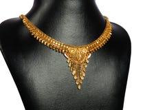 Guldhalsband Royaltyfri Bild