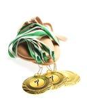 Guldmedaljer Royaltyfri Foto