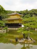 guldpavillon Arkivbild