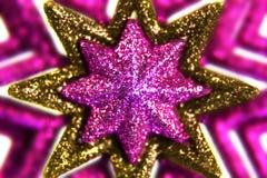 guldpurplestjärnor Fotografering för Bildbyråer