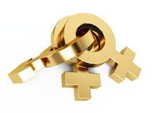 guldsexsymbol Royaltyfria Bilder