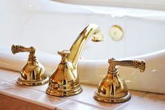 Guldvattenkran Fotografering för Bildbyråer