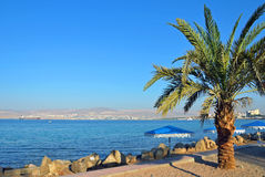 Gulf of Aqaba Royalty Free Stock Photos