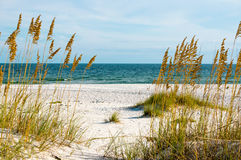 Gulf Coast Royalty Free Stock Photo