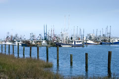 Gulf coast shrimp boats in dock Stock Image