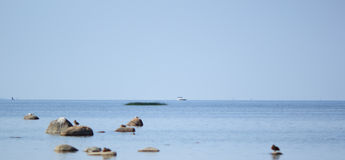 Gulf of Finland. Blue sky, water, stones and birds - all its gulf of Finland in the summer Royalty Free Stock Images