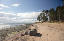 Gulf of Finland, coast Royalty Free Stock Photos