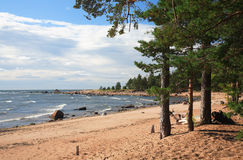 Gulf of Finland, coast Stock Photo