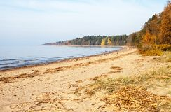 The Gulf of Finland coastline in autumn stock image